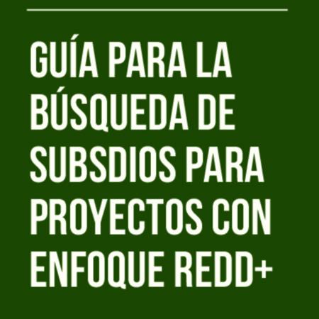 Guía para la Búsqueda de subsidios para proyectos con enfoque REDD.pdf