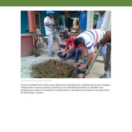 Elaboracion de bloques nutricionales.pdf
